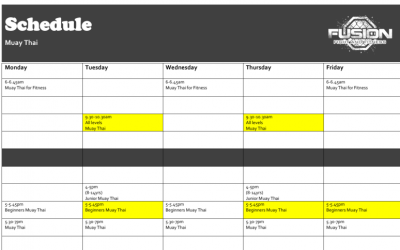 WHAT?!  9 New Classes Added to Schedule for 2020?!